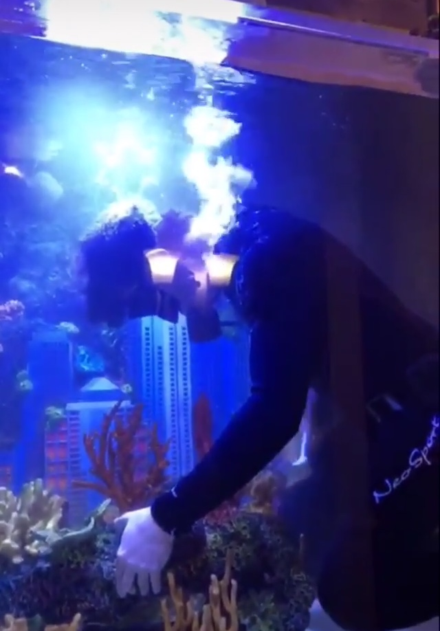 Rapper 2 Chainz Fish Tank Is So Big That He Needs A Diver To CleanIt