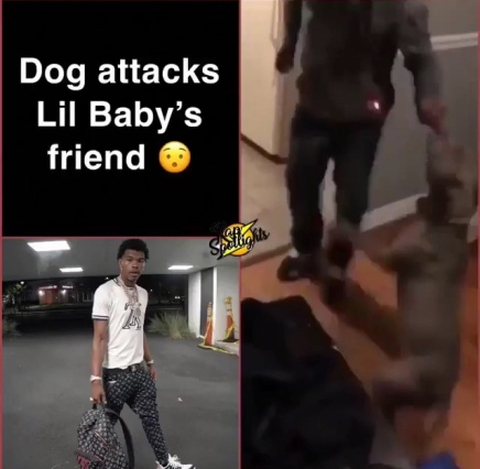 Lil Baby Friend Attacked By His Dog ( Viral Flame Network )